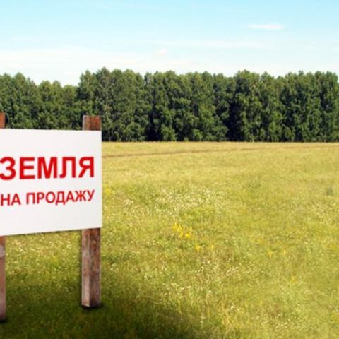 Срок переоформления земельных участков в Крыму продлен на полгода.