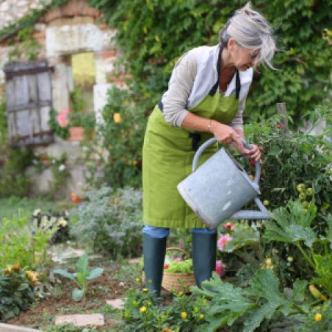 Новый закон о садоводстве и огородничестве.
