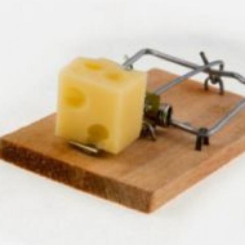 «Бесплатный сыр»: главные ошибки покупателей – стремление купить как можно дешевле и нежелание разбираться в документах.