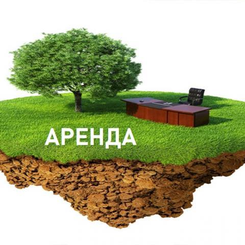 Аренду земельных участков станут оформлять по-новому.