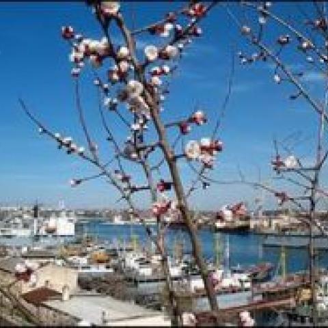 Окно спроса. За 2015 год крымское жилье подешевело на 25 процентов.