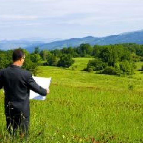 Земляной нал. Как без революций изъять пустующие сельскохозяйственные земли.