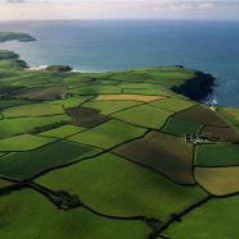 Изменение условий аренды земли - последствия для бизнеса.