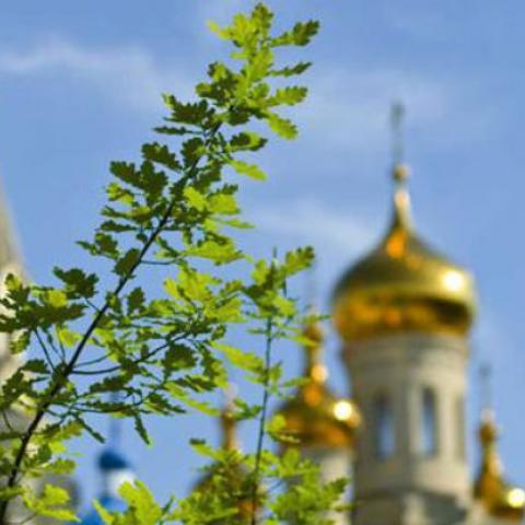Сегодня, 19 июня, отмечается праздник Святой Троицы.