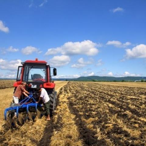 В Крыму растет численность сельских жителей.