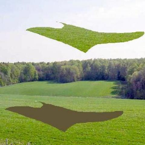 Кто рискует лишиться земельных участков?